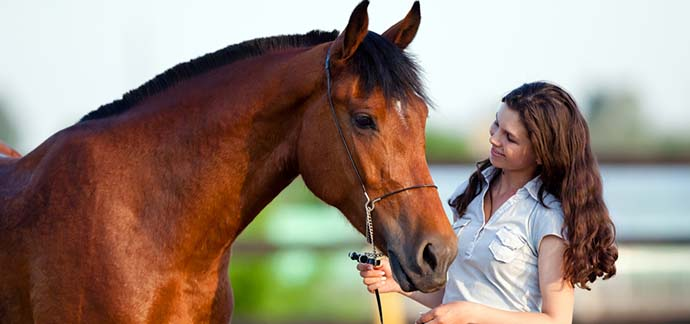 common mistakes horse owners