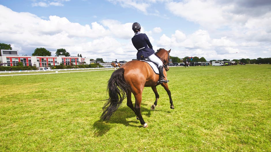 Improving Your Sitting Trot