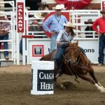 Calgary Stampede barrel racing Leg Saver
